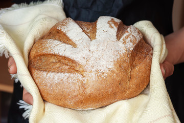 Round bread in the hands