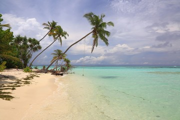 Gorgeous view of Indian Ocean, Maldives. White sand coast line with green trees, turquoise ocean water and blue sky with white clouds. Gorgeous nature landscape background.