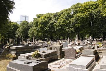 Printed roller blinds Cemetery Paris - Cimetière des Batignolles