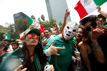 Soccer Football - FIFA World Cup - Group F - South Korea v Mexico