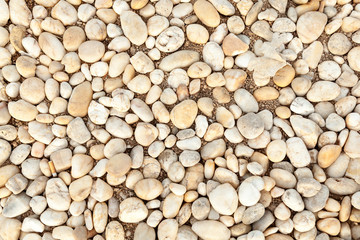 abstract sea stone texture. sea pebbles