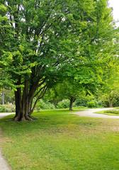 Public park landscape