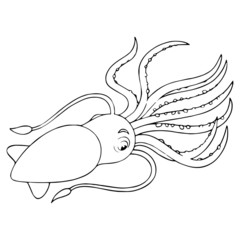 Squid cartoon illustration isolated on white background for children color book