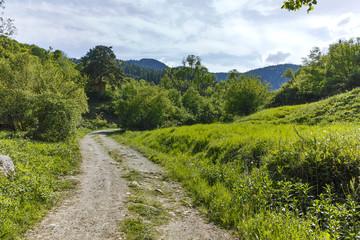 Landscape with Green Hills near village of Fotinovo in Rhodopes Mountain, Pazardzhik region, Bulgaria