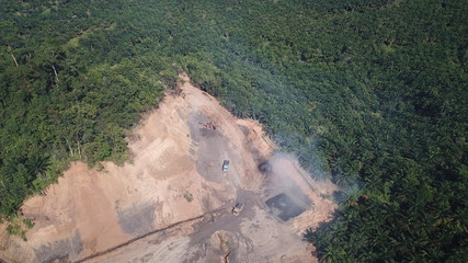 Deforestation of rainforest for oil palm plantations