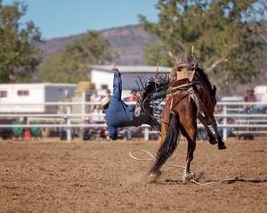 Cowboy Falling Off Bucking Horse