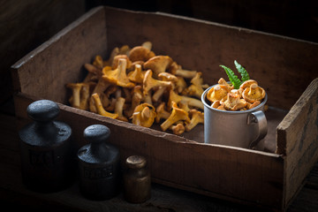 Edible chanterelles straight from the forest in wooden box