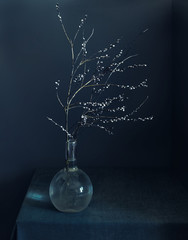still life with a branch. minimalism. vintage.