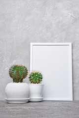Small cacti in flower pots and mock-up of white frame with copy space for poster