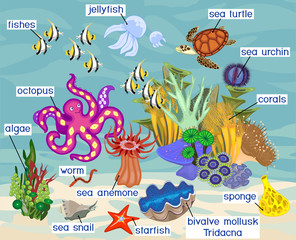 Ecosystem of coral reef with different marine inhabitants with titles