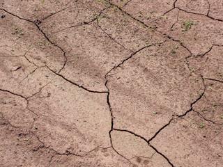 Trockenheit im Boden