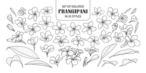 Set of isolated frangipani in 35 styles.