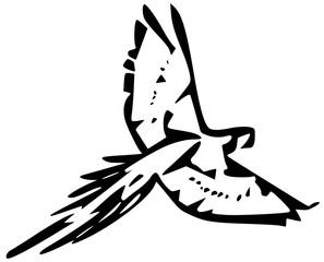 bird parrot black silhouette vector