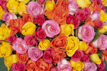 Pink, red, yellow, orange roses in a bouquet.