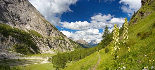 Valley in Dolomites with Monte Pelmo on the background