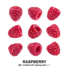 Raspberry collection. Raspberries isolated on white background with clipping path. Seamless Pattern