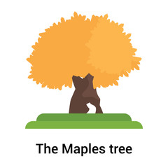 The Maples tree icon vector sign and symbol isolated on white background, The Maples tree logo concept