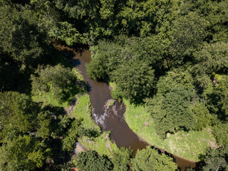 A small brook flows through a wild forest during summer time as shown from above