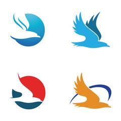 Simple Hawk Eagle Logo Symbol Template