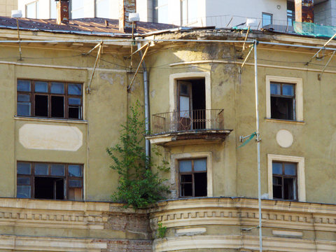 Old collapsing building with a tree growing on the ledge