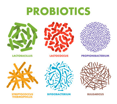 Probiotics. Good bacteria and microorganisms for human health. Microscopic probiotics, good bacterial flora