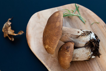 freshly collected boletus edulis over Wooden Background. Autumn Cep Mushrooms. Cooking delicious organic mushroom. Gourmet food