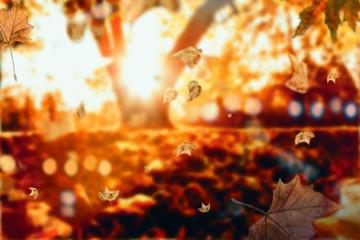 Herbstlandschaft Sonnenuntergang
