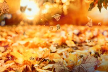 Naturlandschaft Herbst