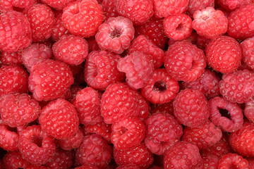 Juicy and fresh ripe raspberries close-up. Natural background