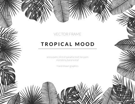 Tropical vector template background with vintage exotic plants. Hand drawn retro styled frame graphic.