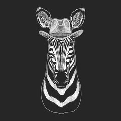 Zebra, Horse. Wild west. Traditional american cowboy hat. Texas rodeo. Print for children, kids t-shirt. Image for emblem, badge, logo, patch.