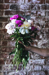 Bunch of peonies in man's hand against brick wall
