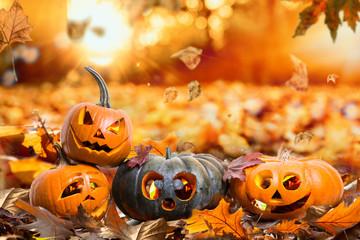 HerbstHintergrund Natur Halloween Kürbisse