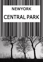New York illustration photo print central park, typography, tee shirt graphics