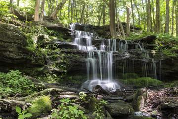 Gunn Brook Falls