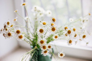 White daisies in a vase.