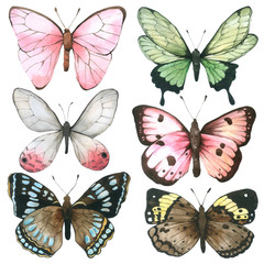 Butterfly watercolor collection isolated  on white background , Set of Butterfly Hand drawn painted for Greeting Card ,Wallpaper ,Postcards, Product,Packaging and more
