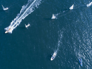 大きな船の周りについて海を走る複数のヨット