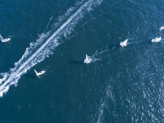 大きな船が立てた波の線の横を並んで走るヨット