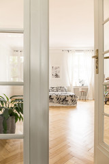 View through door to spacious bright bedroom interior with patterned bed and plant. Real photo