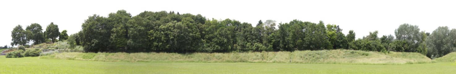 Foto auf AluDibond Khaki Very high definition Treeline isolated on a white background