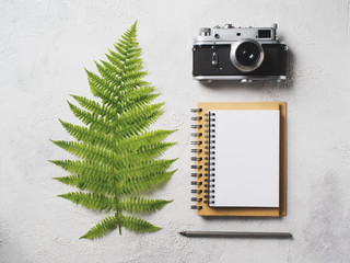 Nature flat lay with notepad, camera and leaf of fern