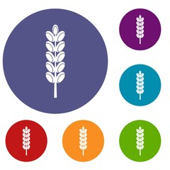 Field spike icons set in flat circle red, blue and green color for web