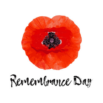 Remembrance Day vector card, banner Anzac Day.