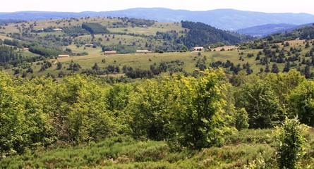 paysages du haut Forez, Auvergne