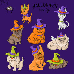 Set of cartoon cute cartoon characters of a cat and a dog in wald hats in the Halloween style.