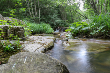 Forests, waterfalls and streams to relax