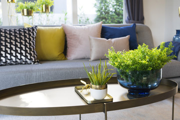 green plant vase on table with colorful cushion on gray sofa