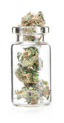 Medical marijuana isolated on white background. Therapeutic and medicinal cannabis