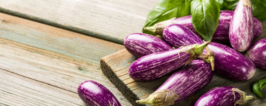 Heap of small eggplant or aubergine vegetable with basil leaves on old wooden background. Healthy food concept with copy space. Benner.